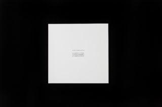 Back cover of Direzioni by Giovanni Anselmo